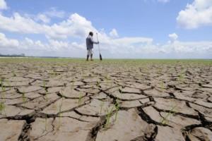 sécheresse-agriculture-539x360