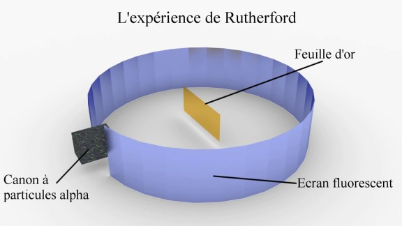 experience rutherford
